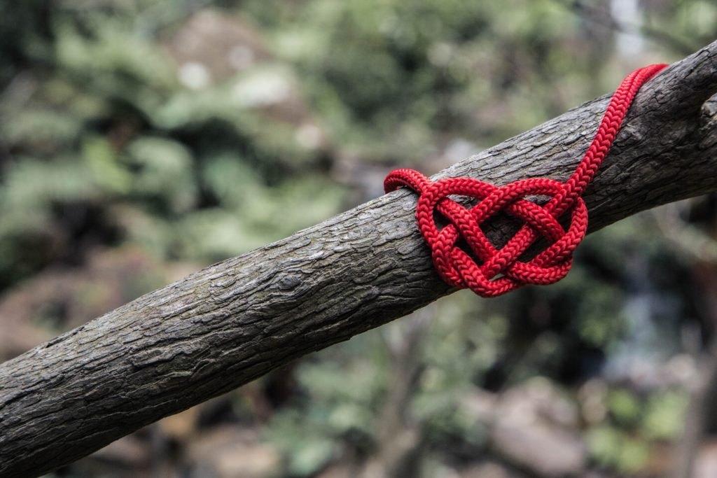 Heart on branch